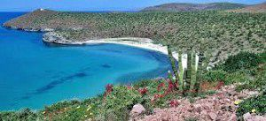 El ecoturismo en Baja California es una aventura apasionante
