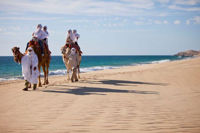 Vacaciones inolvidables, gracias Los Cabos
