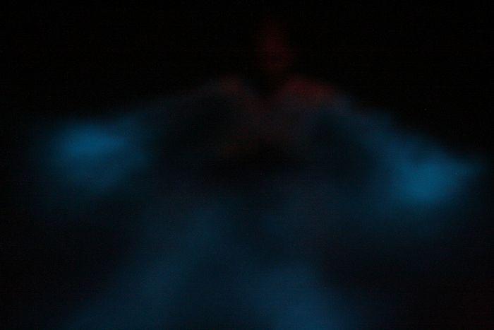 Playas de Puerto Rico, el espectáculo nocturno de las bahías bioluminiscentes