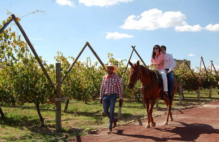 Atractivos turísticos de Guanajuato: tres circuitos imperdibles