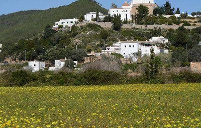 Colina del Puig de Missa