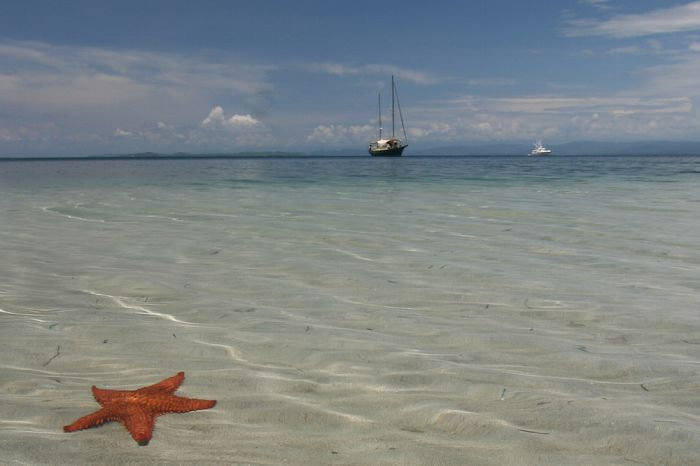 Descubre las mejores playas de Bocas del Toro