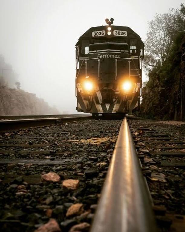 Viajar en tren, una experiencia perfecta para la época decembrina