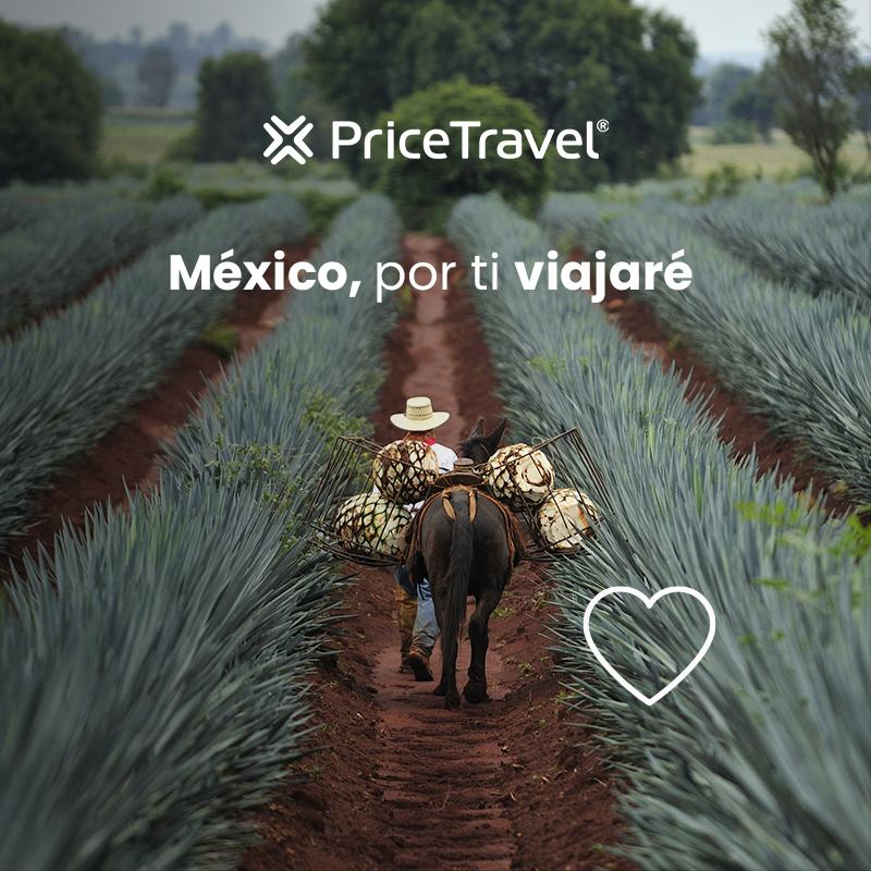 México, por ti viajaré a la Ruta del Tequila