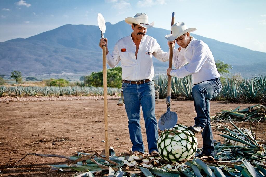 Descubre los lugares turísticos de Jalisco a través de sus rutas