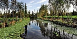 Actividades de ecoturismo en el Distrito Federal