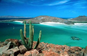 Más allá de las playas de los Cabos