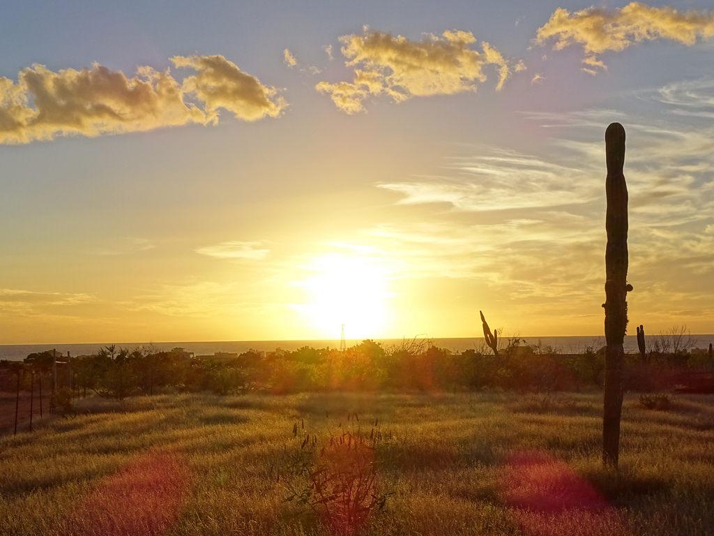 Atractivos Turísticos de Baja California Sur: Todos Santos, un Pueblo Lleno de Magia