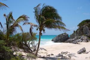 El paraíso se encuentra en Playa del Carmen México