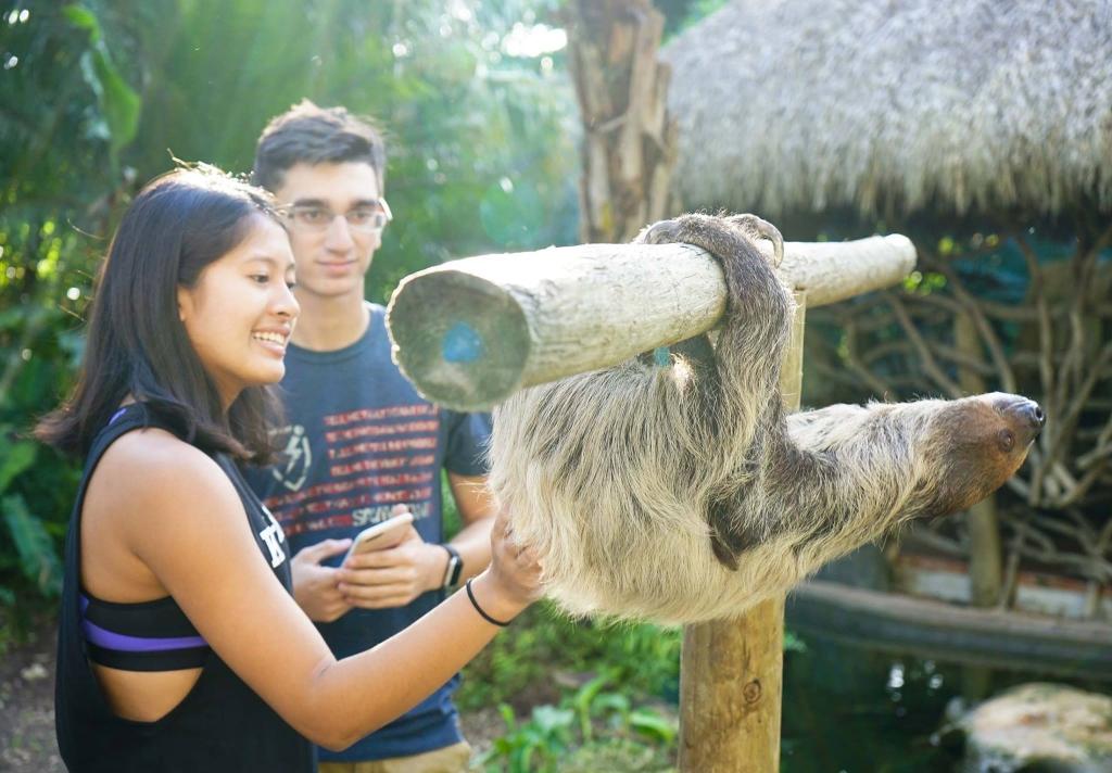 5 actividades en Miami para los amantes de la naturaleza