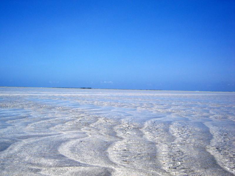 Maragogi nueva estrella de las mejores playas de Brasil