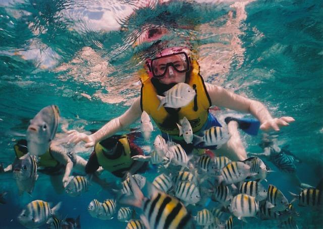 Disfruta el buceo en Riviera Maya con tu agencia de viajes