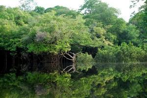 Los deportes extremos en Peru la selva amazonica peruana