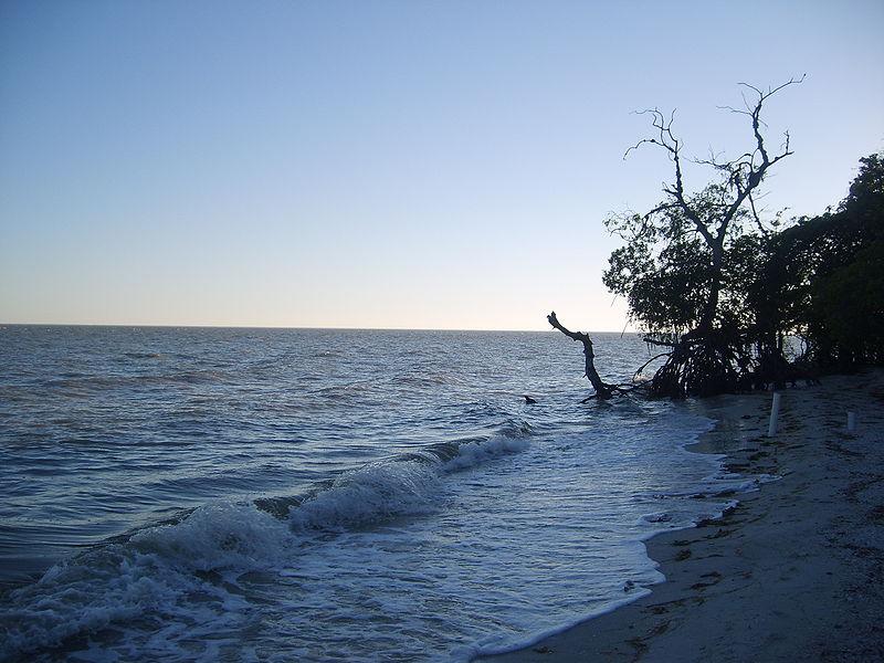 Ecoturismo y turismo de aventura en la Laguna de Términos