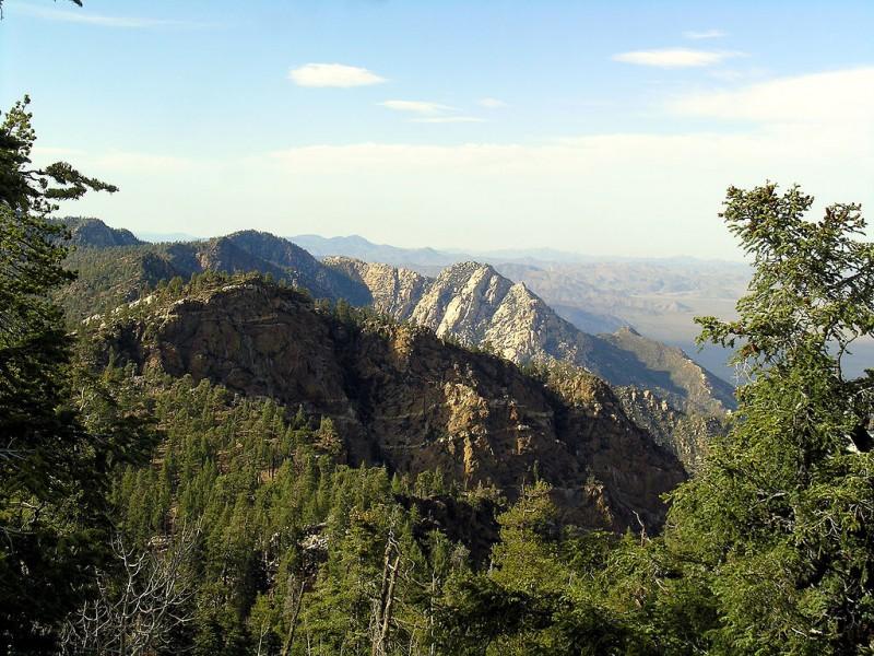 Ecoturismo en Baja California: Parque Nacional San Pedro Mártir