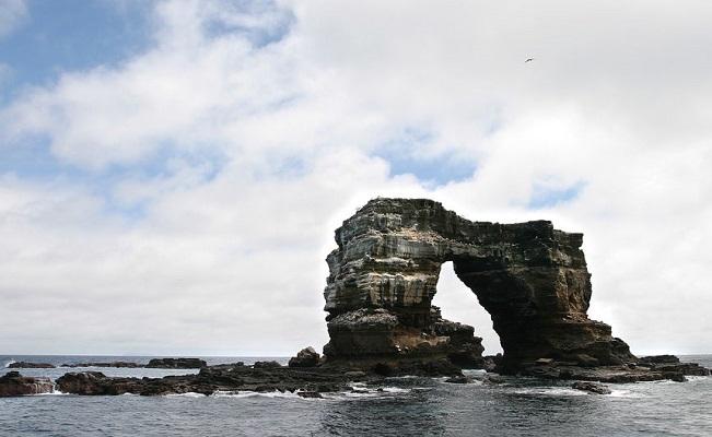 Ecoturismo: paquetes turísticos a Galápagos